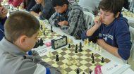 Até junho, eventos de xadrez do Sesc PR estão suspensos | Fecomércio
